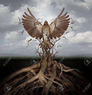 34979264-Nueva-vida-liberarse-como-un-concepto-de-la-libertad-y-el-poder-como-la-subida-de-la-Phoenix-para-re-Foto-de-archivo